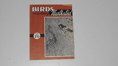 Birds Illustrated Monthly Magazine Volume: XIII Number: 2 JUNE 1967 - used