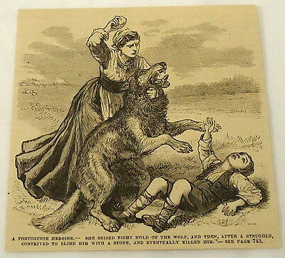 1881 magazine engraving ~ WOMAN KILLS WOLF that is attacking boy