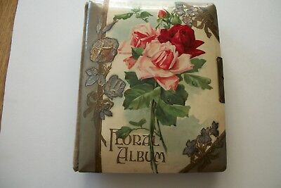 Antique Cabinet Photos In Celluloid Floral Album