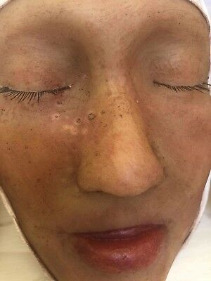 Vintage Wax Moulage Anatomical Face Oddity Death Mask