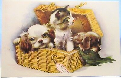 1920s POSTCARD DOGS AND CAT IN BASKET