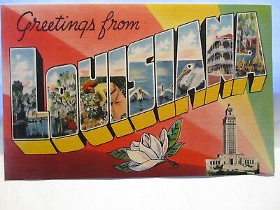 """1940 Large Letter Postcard """" Greetings From Louisiana """" W/ Sites Unused"""