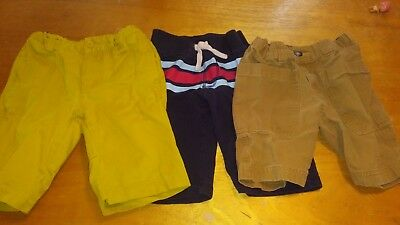 lot of 7 tea collection boys shorts size 6