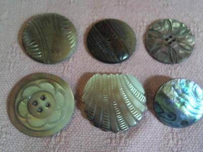 """Lot Of 6 Antique / Vintage Carved Abalone / Mop Buttons , 1 1/4"""" - 1 1/2"""" Across"""