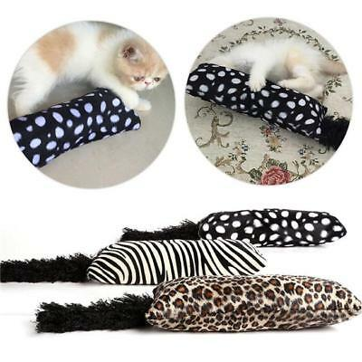 Interactive Catnip Cat Teeth Toy Grinding For Pets Funny Pillow Toys CB