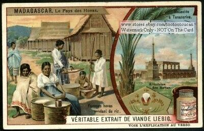 Madagascar Native Hovas Women Selling Rice c1909 Trade Ad Card