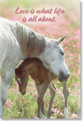 LEANIN TREE Love is What Life is All About #25676 Horse Magnet~Mare and Foal~
