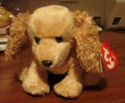 "Beanie Baby-""sis"" Bear August 5,2004 Ty Store Exclusive"