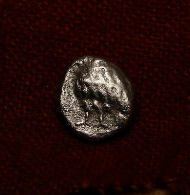 Eagle Chick/ Svastika⭐️ Thrace obol Unpublished anywhere. Priceless Greek Coin