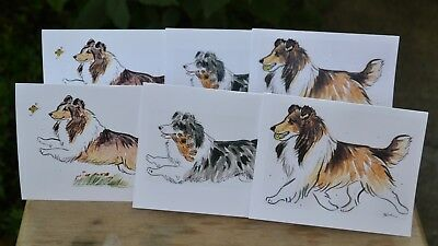Sheltie .Post cards made from my original watercolors .Set of 6 .LOOK!