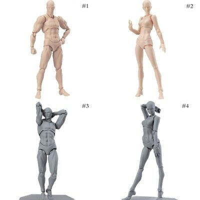 S.H.Figuarts He She Body Kun DX Gray Color Ver Body-Chan Action PVC Figure Sets#