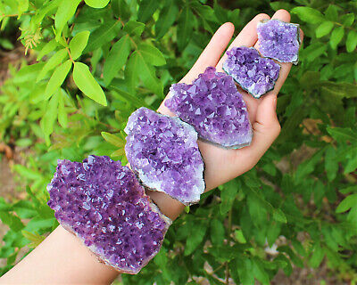 Amethyst Geode Druzy Crystal Quartz Cluster Natural Specimen: You Choose Size!