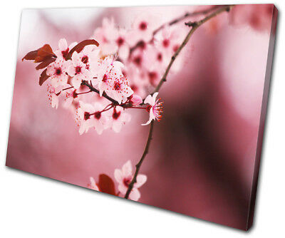 Flowers Flower Cherry Blossom Tree Floral SINGLE CANVAS WALL ART Picture Print