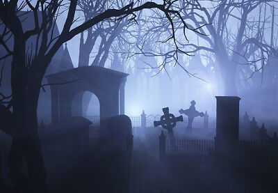 Halloween Horror Grave Photography Background Polyester Photo Backdrop 7x5FT