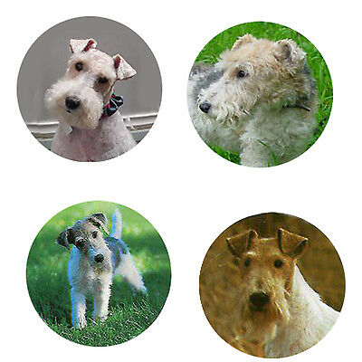 Fox Terrier-Wirehaired Magnets : 4 Foxies for your Collection-A Great Gift
