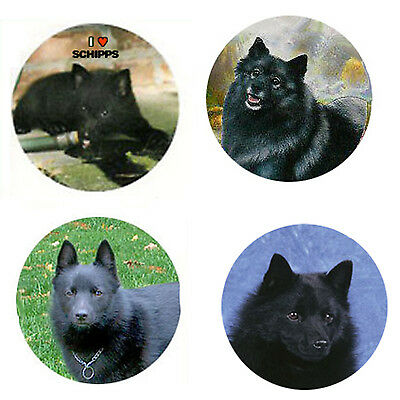 Schipperke Magnets :4 Cool Schipperkes 4 your Fridge or Collection-A Great Gift