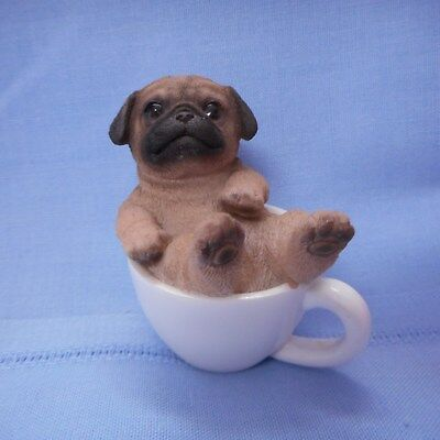NEW Mini PUG Pup in a Mini Cup from Pacific Trading