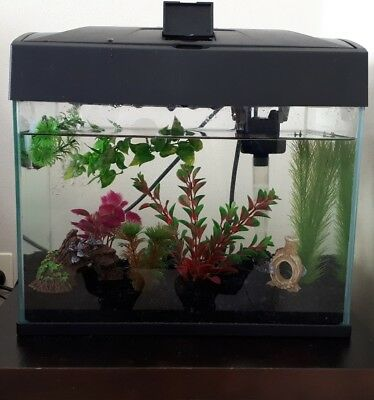 Complete Glass Aquarium With Lid 37 x 24 x 28 cm 30L Fish Tank with Accessories