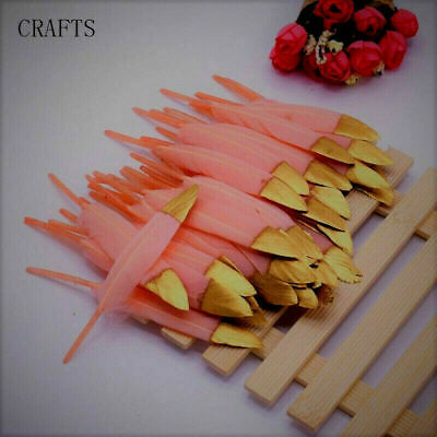 FEATHERS  Goose BLUSH PINK with GOLD TIP X 5  4-6inch/10-15cm   UK Seller