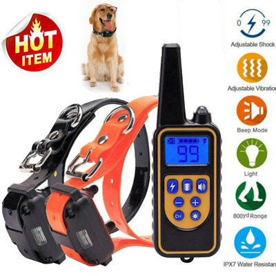 Waterproof Rechargeable LCD Electric Remote Dog Training Shock Collar 800 Yard
