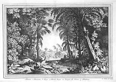 ca 1750 Molukken Maluku Islands Indonesia Ansicht view Kupferstich antique print