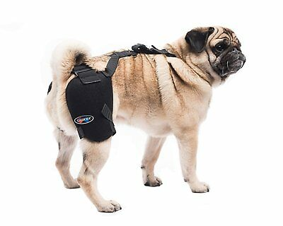 Caldera Hot Cold Gel Pack Pet Therapy Wrap Small Hip Washable