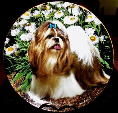 """Shih Tzus PICTURE PERFECT Plate Tzu Dog Puppy Danbury Mint Limited Edition 8.25"""""""