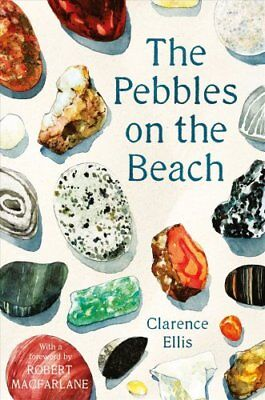 The Pebbles on the Beach by Clarence Ellis 9780571347933 (Paperback, 2018)