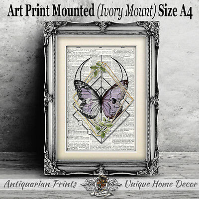 Purple Butterfly and Skull ART PRINT on ANTIQUE DICTIONARY BOOK PAGE Picture