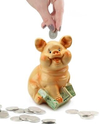 Sitting Pig on Cash Money Piggy Bank Coin Bank Saving Money Gift and Home Decor