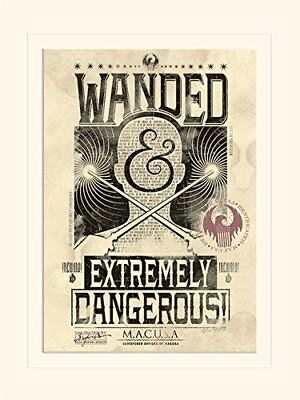 Fantastic Beasts - Extremely Dangerous - Print  Wall Print Poster Home Decor