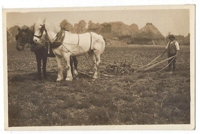 AGRICULTURE Farmer with Horse Drawn Plough, RP Postcard Unused c1910