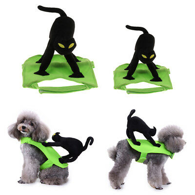 Pet Funny Costumes Suit Cat Rider Style Clothing for Dog Cat Party Cosplay