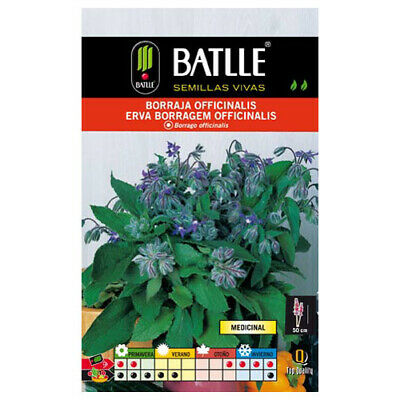 Semillas aromáticas de Battle - Borraja Officinalis (6g)