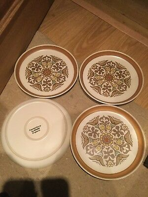 """4 x Denby / Langley Canterbury Dinner Plates 10.25"""" Last Set Available"""