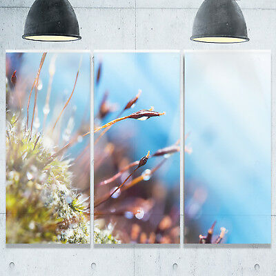Abstract Moss Flowers in Summer Spring - Landscape Glossy Metal Wall Art -