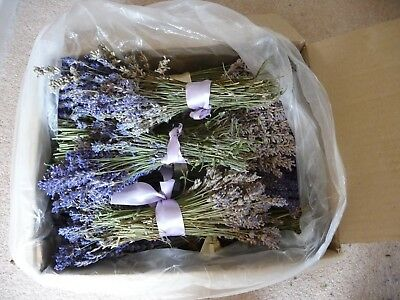 26 Bunches of Dried Lavender Flowers - 2018 Crop - grown without pesticides