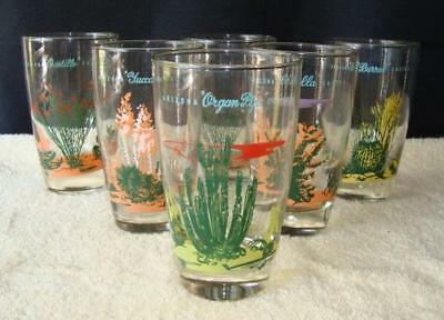 Libbey Blakely Oil & Gas Set of 6 Clear Cactus Glasses