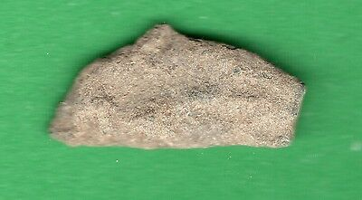 Sarmatia OLBIA cast proto money DOLPHIN 5th Century BC Ukraine Crimea 151
