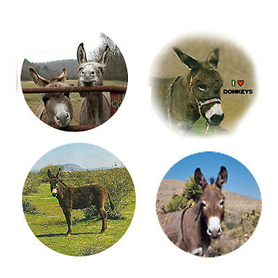 Donkey Magnets-B:   4 Dapper Donkeys for your Fridge or Collection-A Great Gift
