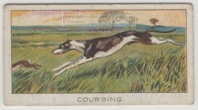 Waterloo Cup Greyhound Course 1920s Trade Ad Card