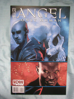 Angel Only Human Comic # 2 - David Messina Cover - Sept 2009 - Buffy Universe