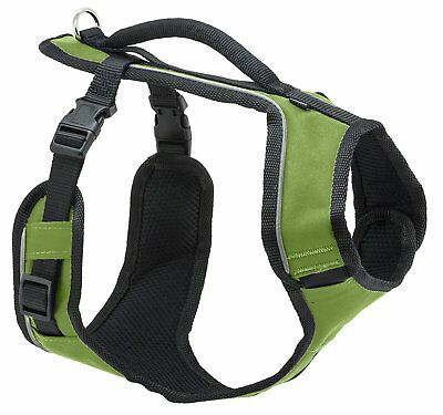 EasySport Harness Large Apple for Dogs
