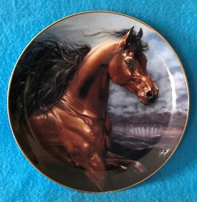 Chosen Champion Collectible Plate from Nobel and Free Collection
