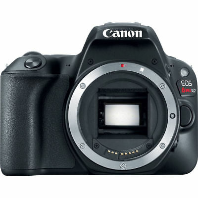 Canon EOS Rebel SL2 DSLR Camera (Body) 2249C001