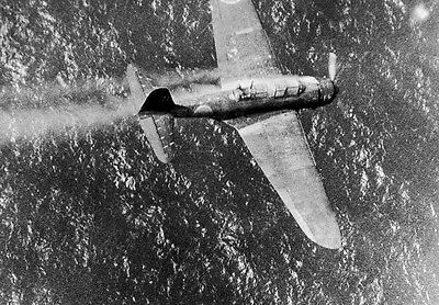 WWII Photo Japanese Dive Bomber Shot Down Truk WW2 World War Two Pacific US Navy