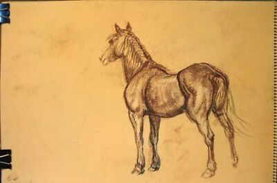 Maureen Love Original Horse with Saddle Working Sketches