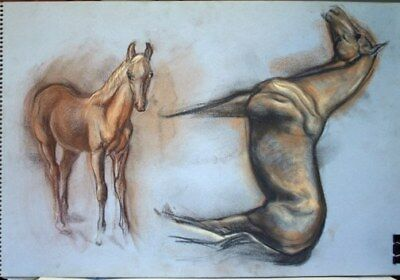Maureen Love Original Horse/Foal Sketches