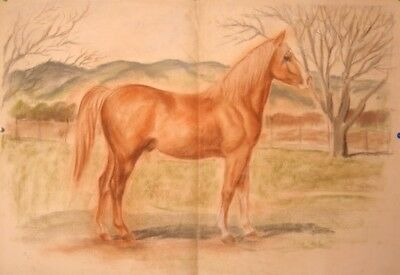 Maureen Love Original Large Horse in pasture sketch