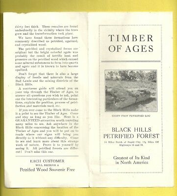 Vintage Pamphlet BLACK HILLS PETRIFIED FOREST Timber Of Ages